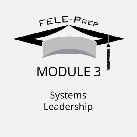 Module 3 – Systems Leadership