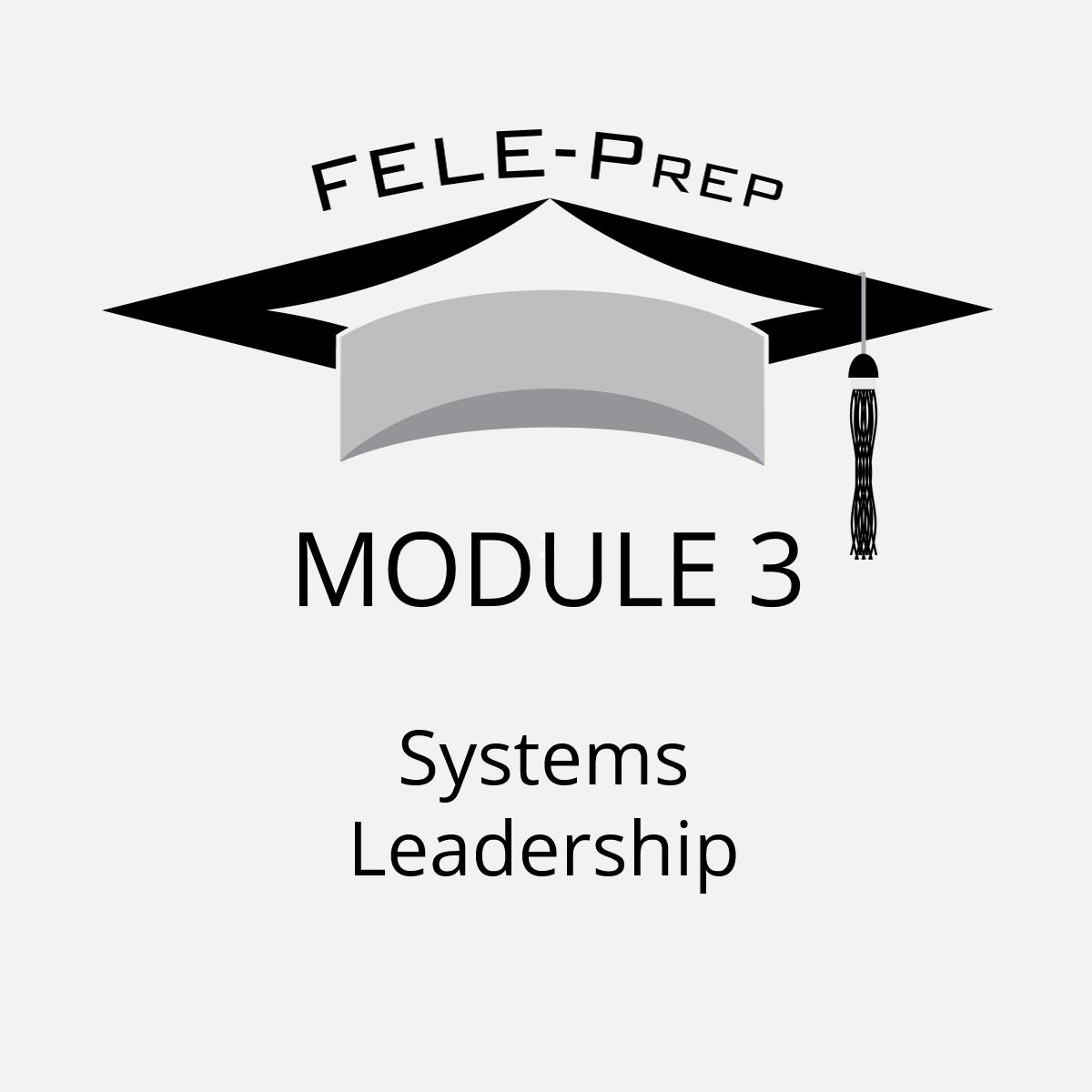 Module 3 – Systems Leadership